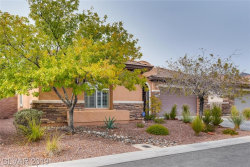 Photo of 209 MULDOWNEY Lane, Las Vegas, NV 89138 (MLS # 2156131)