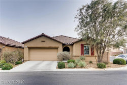 Photo of 11264 FERGUSON SPRINGS Street, Las Vegas, NV 89179 (MLS # 2156762)