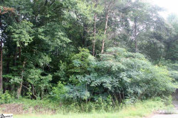 Photo of 3480 Highway 11, Travelers Rest, SC 29690 (MLS # 1396343)