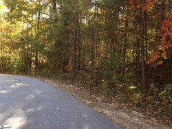 Photo of Rocky Road, Cleveland, SC 29635 (MLS # 1401012)