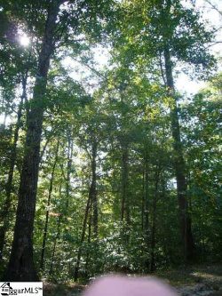 Photo of talking rock Drive, Landrum, SC 29356 (MLS # 1401924)