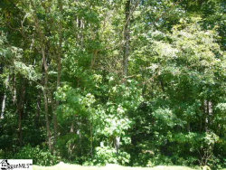 Photo of 35 foggy cut Lane, Landrum, SC 29356 (MLS # 1401988)