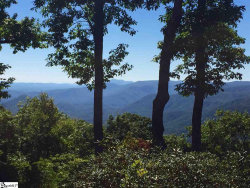 Photo of 114 Peaceful Night Trail, Travelers Rest, SC 29690 (MLS # 1406022)
