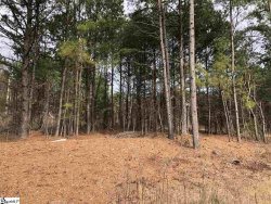 Photo of 0 John Dodd Road, Wellford, SC 29385 (MLS # 1411178)