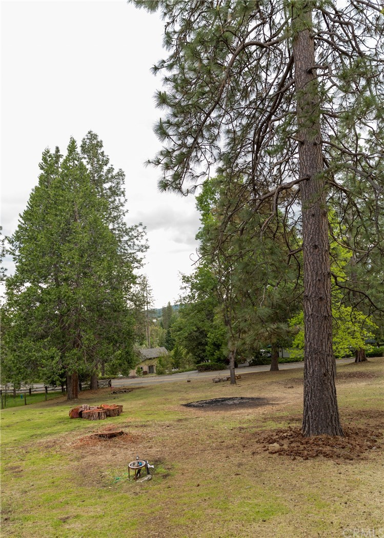 Photo for 5716 Coho Court, Mariposa, CA 95338 (MLS # FR19110238)