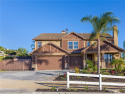 Photo of 1439 Andalusian Drive, Norco, CA 92860 (MLS # IG18254627)