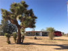 Photo of 57644 Canterbury Street, Yucca Valley, CA 92284 (MLS # JT18087388)