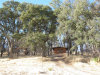 Photo of 20241 Big Canyon Road, Middletown, CA 95461 (MLS # LC17254230)