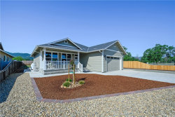Photo of 15229 Richs Way, Middletown, CA 95461 (MLS # LC19109369)
