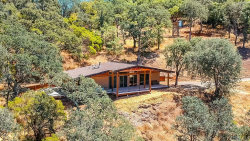 Photo of 11007 Crestview Drive, Clearlake, CA 95424 (MLS # LC19174103)