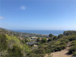 Photo of 1333 Moorea Way, Laguna Beach, CA 92651 (MLS # LG20143833)