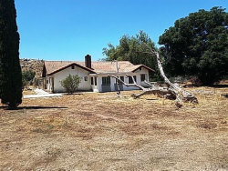 Photo of 20120 Smith Road, Perris, CA 92570 (MLS # MD19166193)