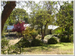Photo of 4053 Triangle Road, Mariposa, CA 95338 (MLS # MP18000229)
