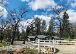 Photo of 3491 Triangle Road, Mariposa, CA 95338 (MLS # MP19087784)