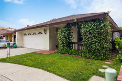 Photo of 26462 Bay Tree Road, San Juan Capistrano, CA 92675 (MLS # OC19143113)