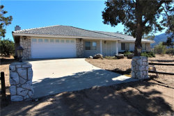 Photo of 63260 Palm Canyon Drive, Mountain Center, CA 92561 (MLS # OC20051368)