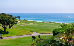 Photo of 2 Monarch Cove, Dana Point, CA 92629 (MLS # OC20146998)