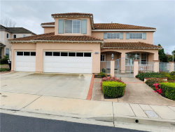 Photo of 301 La Fremontia, San Clemente, CA 92672 (MLS # PW20047722)