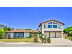 Photo of 1028 Via Navarra, San Pedro, CA 90732 (MLS # SB17140883)