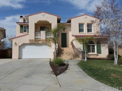 Photo of 21638 PINK GINGER Court, Wildomar, CA 92595 (MLS # SR17179632)
