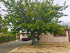 Photo of 13155 Stagg Street, North Hollywood, CA 91605 (MLS # SR18241130)