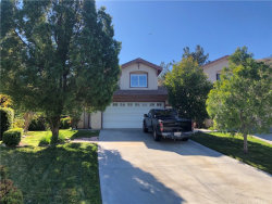Photo of 20024 Egret Place, Canyon Country, CA 91351 (MLS # SR20011338)