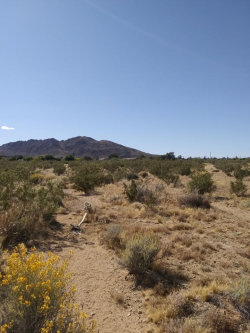 Photo of 0 Shadow Ranch (aka Mountain) Avenue, Joshua Tree, CA 92252 (MLS # 219043139PS)