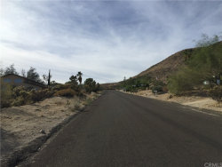 Photo of 0 Hibiscus Drive, Morongo Valley, CA 92256 (MLS # JT18267302)