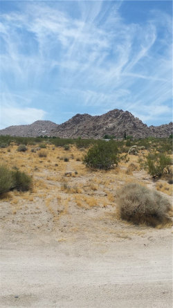 Photo of 64342 Hollinger Road, Joshua Tree, CA 92252 (MLS # JT19182819)