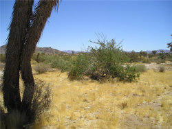 Photo of 0 Julcrest Road, Yucca Valley, CA 92284 (MLS # JT19198371)
