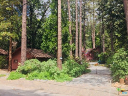Photo of 25230 Lodge Road, Idyllwild, CA 92549 (MLS # 18372432PS)
