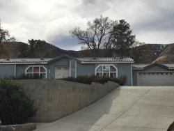 Photo of 916 Starr Court, Lebec, CA 93243 (MLS # 218011664)