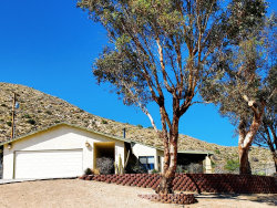 Photo of 49000 Buena Vista Drive, Morongo Valley, CA 92256 (MLS # 219041375DA)