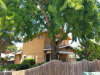 Photo of 9845 Hillhaven Avenue, Tujunga, CA 91042 (MLS # 818002817)