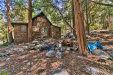 Photo of 40203 Valley Of The Falls Drive, Forest Falls, CA 92339 (MLS # CV20071389)