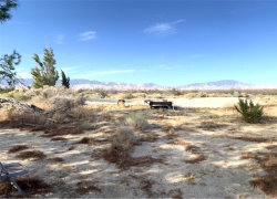 Photo of 230 Gaskell Road, Rosamond, CA 93560 (MLS # DW19230696)