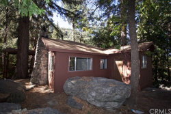 Photo of 9269 Wood Road, Forest Falls, CA 92339 (MLS # EV19233992)