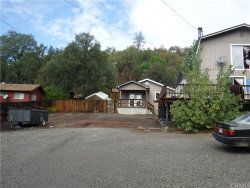 Photo of 17301 Cache Creek Road, Clearlake Oaks, CA 95423 (MLS # LC18238712)