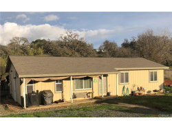 Photo of 7332 Lake Street, Nice, CA 95464 (MLS # LC19049551)