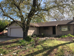 Photo of 12625 Shoreview Drive, Clearlake Oaks, CA 95423 (MLS # LC19089290)