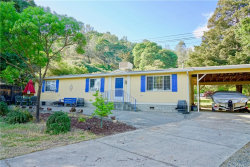 Photo of 11392 E Highway 20, Clearlake Oaks, CA 95423 (MLS # LC19101079)