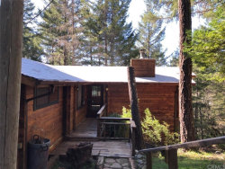 Photo of 25624 Madrone Drive, Willits, CA 95490 (MLS # LC20066699)
