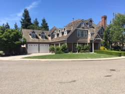 Photo of 2663 Wedgewood Court, Turlock, CA 95382 (MLS # MC19145083)