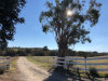 Photo of 4995 Union Road, Paso Robles, CA 93446 (MLS # NS18288315)