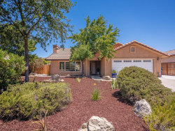 Photo of 3610 Delaney Place, Paso Robles, CA 93446 (MLS # NS20100539)