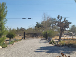 Photo of 9224 Chickasaw, Lucerne Valley, CA 92356 (MLS # PW20201700)