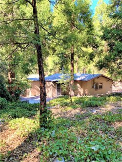Photo of 9181 Corral Road, Forest Falls, CA 92339 (MLS # PW20219864)