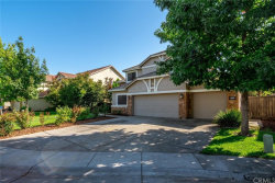 Photo of 1820 Sandhill Crane Court, Gridley, CA 95948 (MLS # SN19230267)