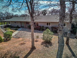 Photo of 18935 Pinto Ln, Red Bluff, CA 96080 (MLS # SN20086237)
