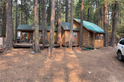 Photo of 21109 Pot Hole Drive, Butte Meadows, CA 95942 (MLS # SN20173207)